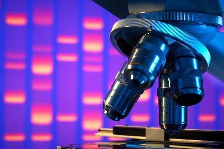 Stem cell speeds healing of stubborn diabetes wounds: research