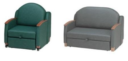 Day Bed & Chair Sleeper